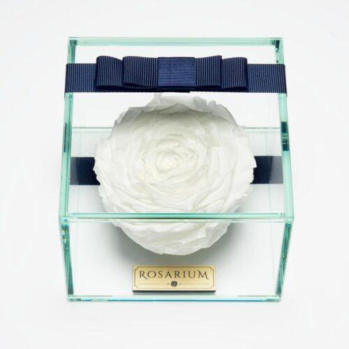 1 darabos hófehér örök rózsa doboz