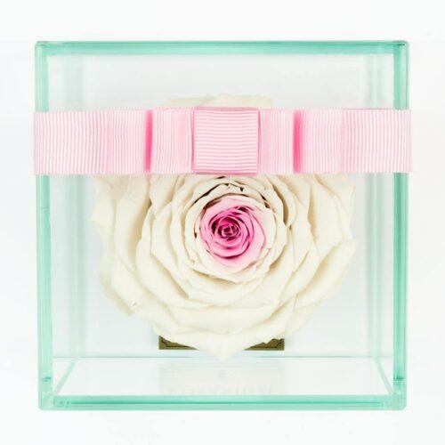 1 darabos fehér közepén rózsaszín örök rózsa doboz
