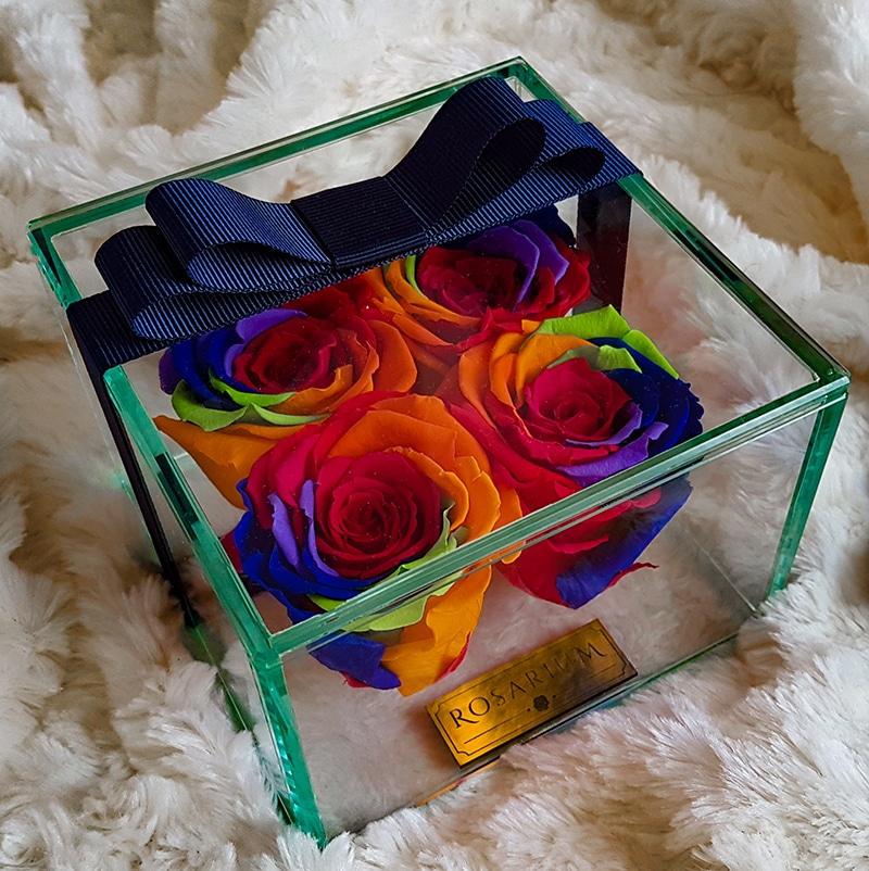 4 Rainbow örök rózsa
