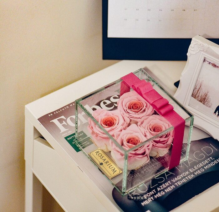 4 baba rózsaszín pink