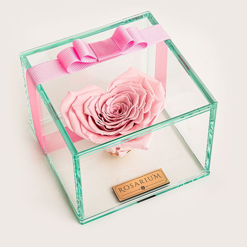 rosarium highlight product uvegdoboz 02
